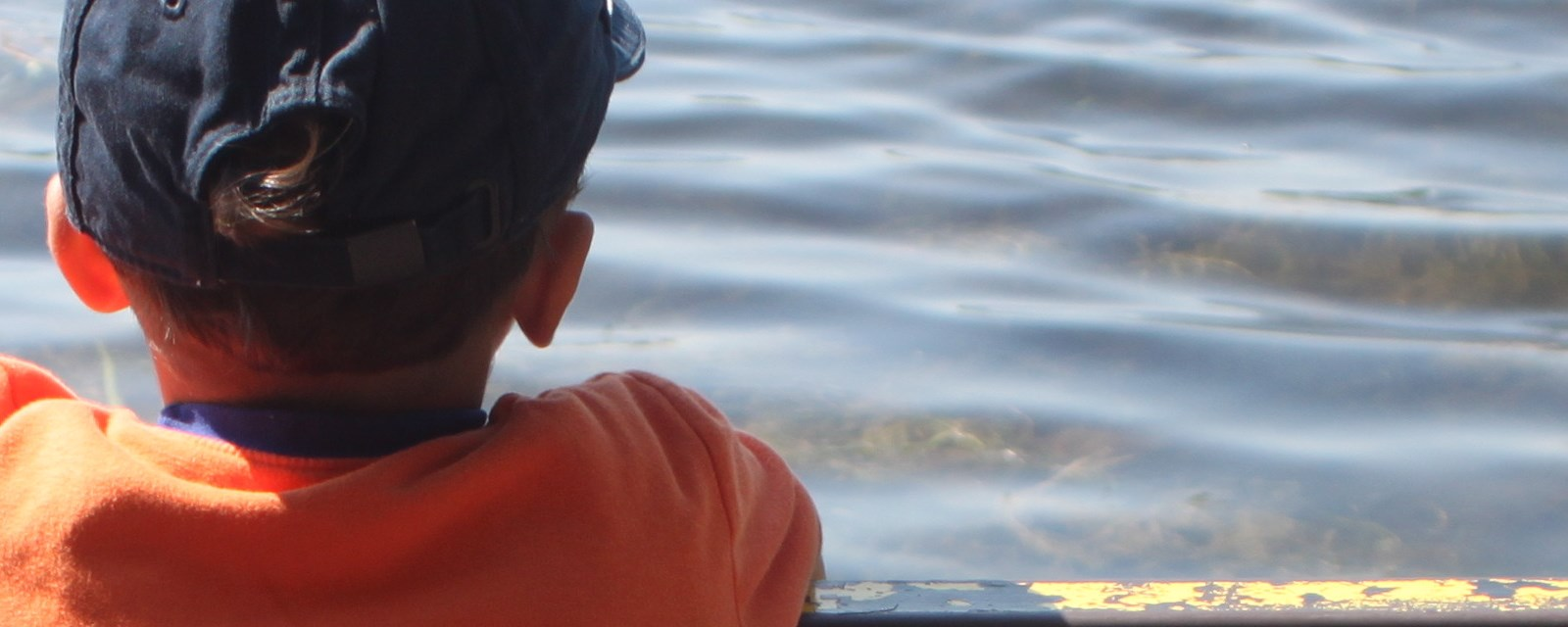 Boy looking out over pond
